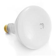 65 Watt Indoor Flood Bulb  20,000 Hrs Incandescent Long Life